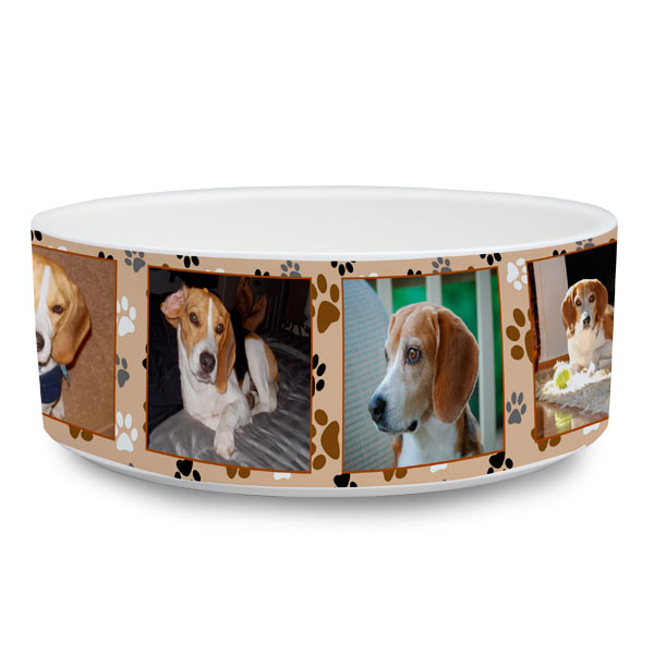 Add photos and text to create a custom food dish for your pet
